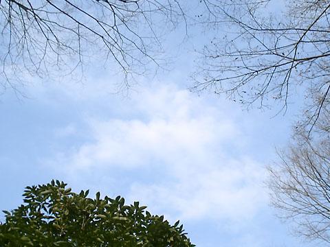 sky0207-2.jpg