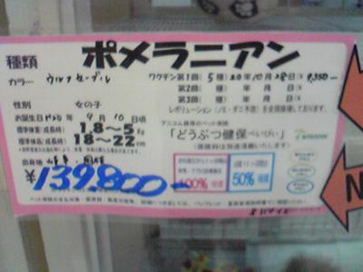 20081030142654