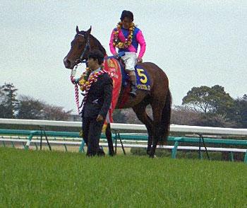 2006-0416-satsukisho.jpg