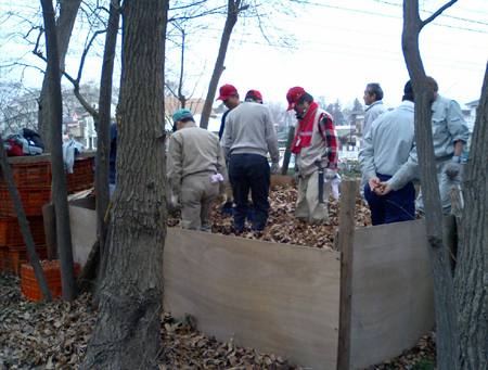 清瀬市内の雑木林維持管理作業20080212その2