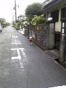 おーい!どこ行くの