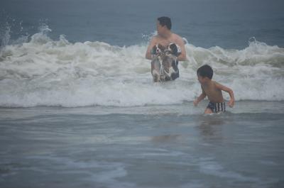 無理やり海へ
