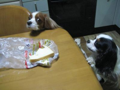 まだ食べたい