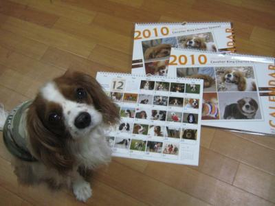 チャオとカレンダー