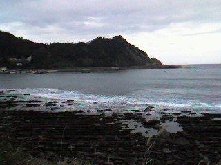 日南海岸はどこも「鬼の洗濯板」状態