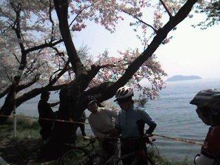 海津大崎より琵琶湖を望む