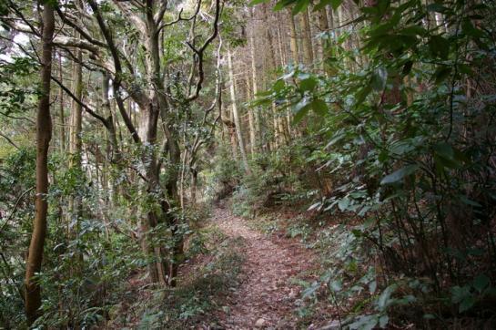 2008_02192月19皿倉山~3