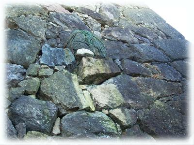 20081101姫路3姥が石