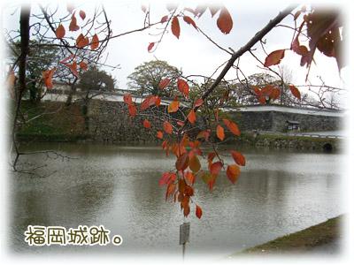 20081207福岡城