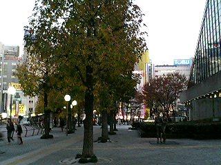 200512036.jpg