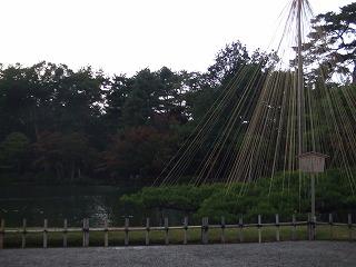 2006_11130590.jpg