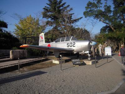 T-6gG