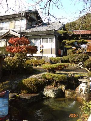 理想の庭池