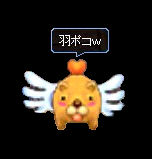 SS_060529_oneday_015.jpg