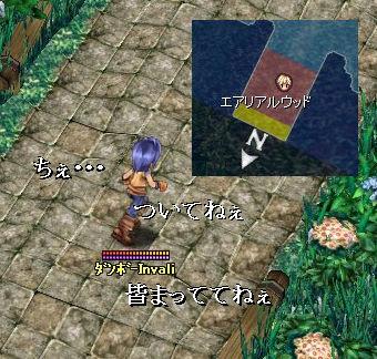 danbo26_060920_025.jpg