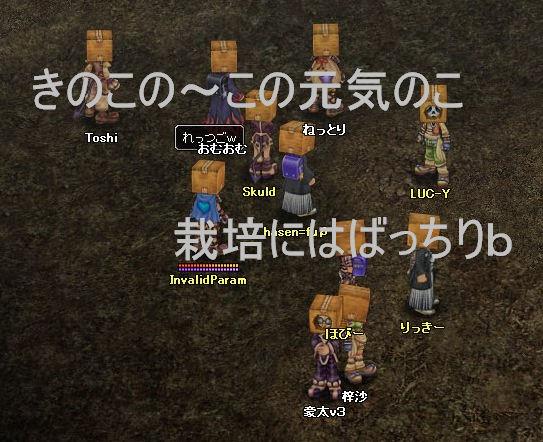 danbo36_061122_013.jpg