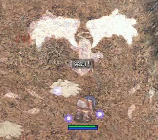 RO20061029_001.jpg