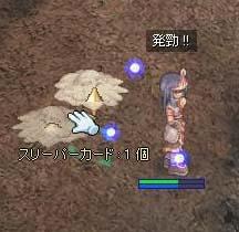 RO20070111_001.jpg