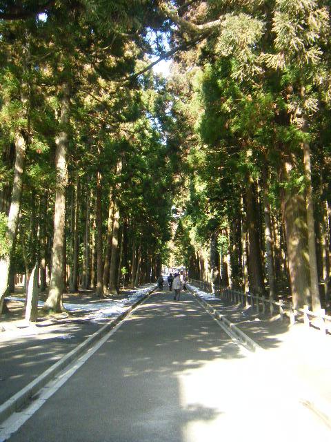 仙台旅行20090220 097