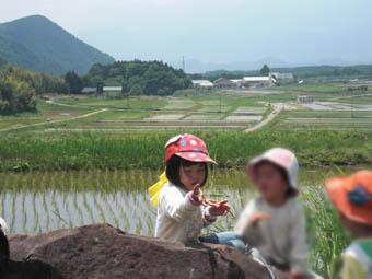 ピッコロ畑2