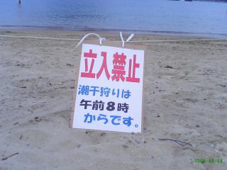 イノブタダービー・潮干狩り