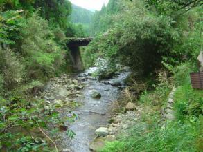 ウナギのいる川