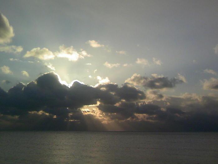 今朝の風景