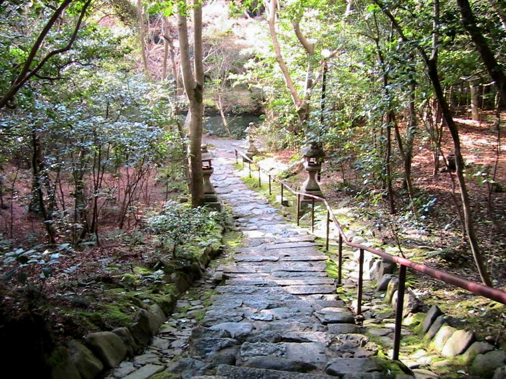 天神川・松ヶ崎・赤山 128