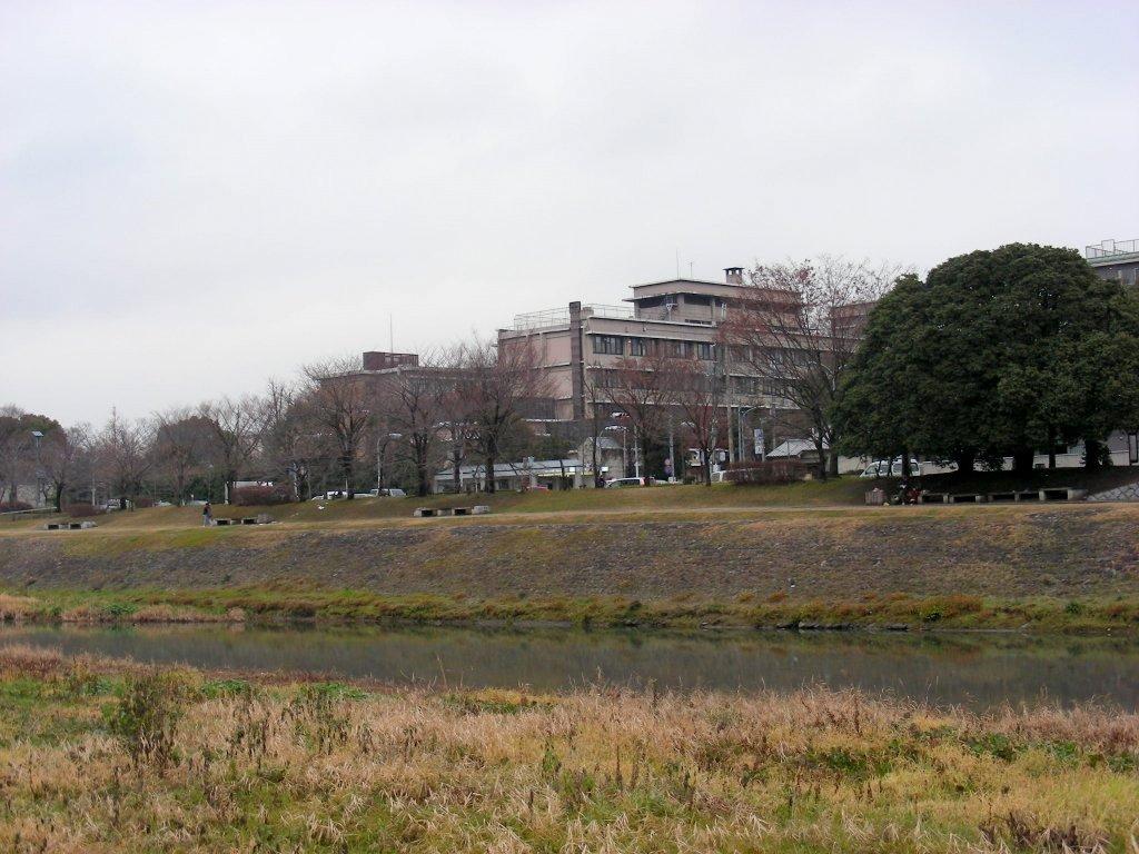 20080123048.jpg