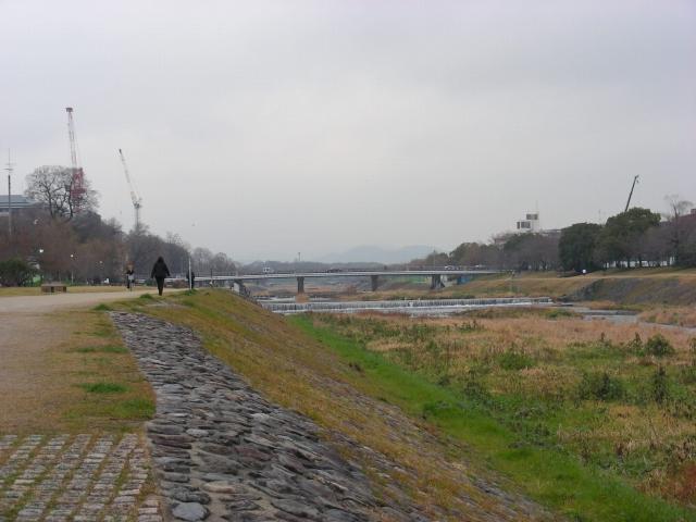 20080205049.jpg