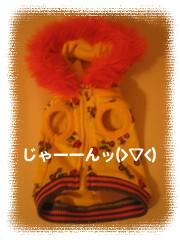 フォトライブラリ - 1086