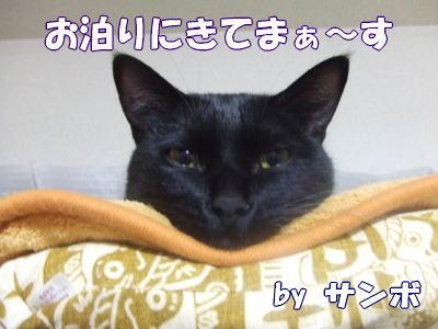 08_2_26_1.jpg