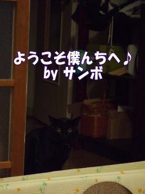 08_4_6_7.jpg