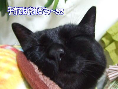 09_6_11_1.jpg