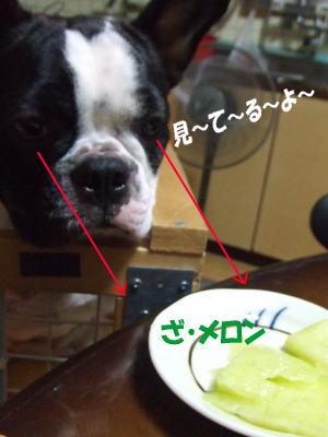 09_6_25_2.jpg