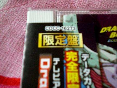 CIMG1408.jpg
