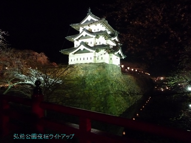弘前城夜桜-02