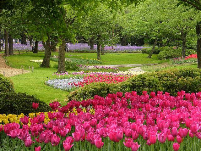 昭和記念公園-04