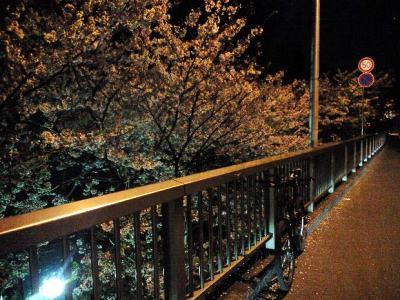 2009-04-11.jpg