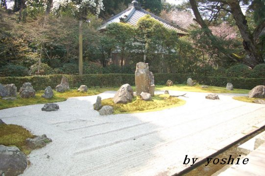 20070411142619.jpg