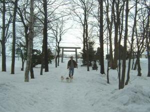 0105b_2008.jpg
