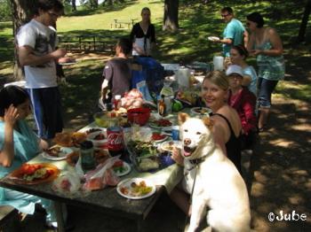 picnicfun711