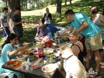 picnicook711