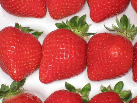イチゴの日(B)