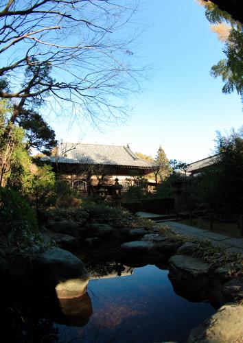 2008-01-03-寺2