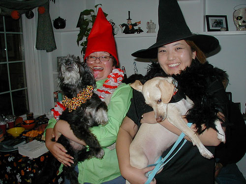 gnome and witch