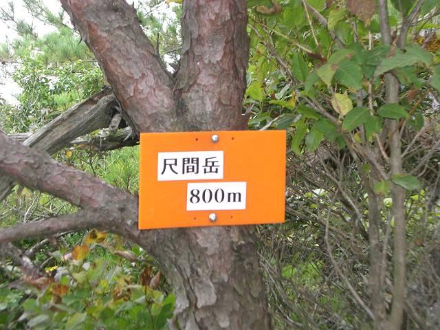 CIMG1090-s.jpg