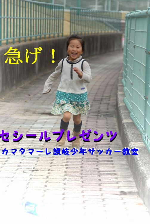 阪神 141