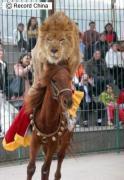 福建省アモイ市の海滄野生動物園で