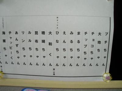P6200899.jpg